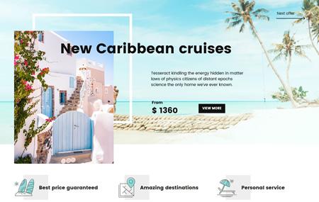 Cruise operator